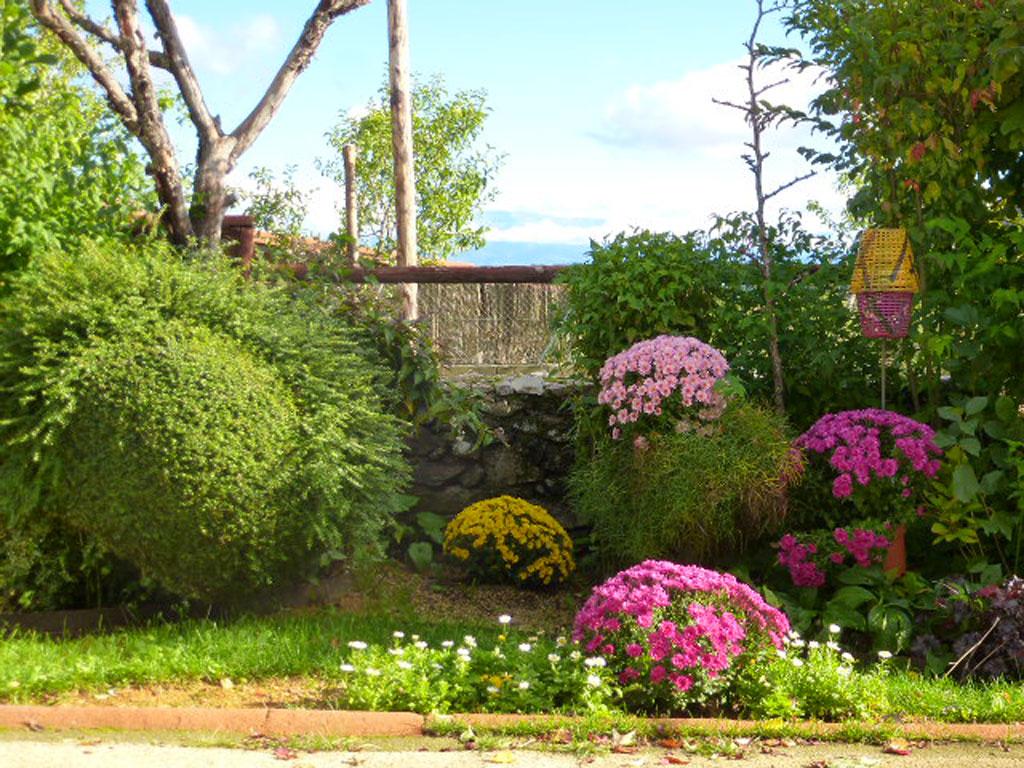 Los jardines casa rural en salamanca for Jardin en casa